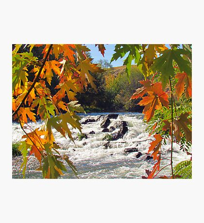 Autumn ~ Mother Nature at Her Finest  Photographic Print