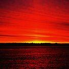 Break of Dawn by Renee Eppler