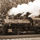 Trains by Penny Fawver