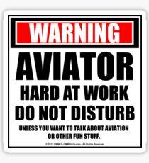 Warning Aviator Hard At Work Do Not Disturb Sticker