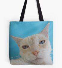 Oscar on Blue Tote Bag