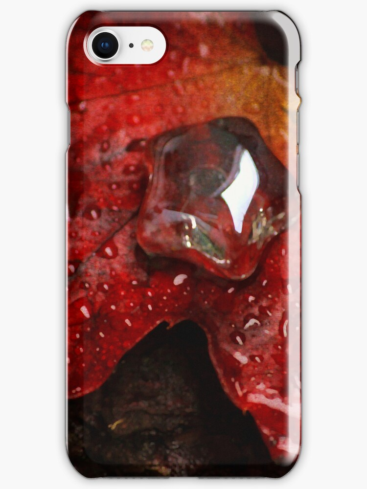 Rain Treasures by Dragos Dumitrascu