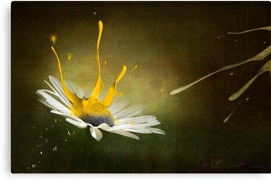 Painting Daisy by Svetlana Sewell