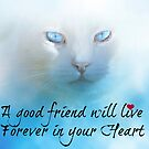Forever in your heart by Angie O'Connor