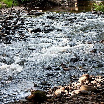 Rapids by Sammyzilla