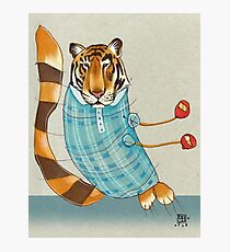 Tiger in Stripes Photographic Print
