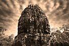 Jungle Faces, Cambodia II by Michael Treloar
