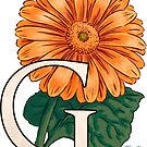 G is for Gerbera Flower Monogram Floating by Stephanie Smith