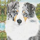 Rowdy ~ Australian Shepherd ~ Oil Painting by Barbara Applegate