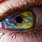 Eye by William Arnold