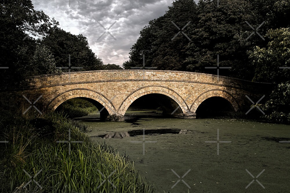 Kimberley Bridge by Country  Pursuits