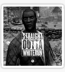 Straight Outta Whiterun Sticker