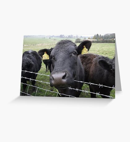 Here's Looking At Moo, Kid Greeting Card
