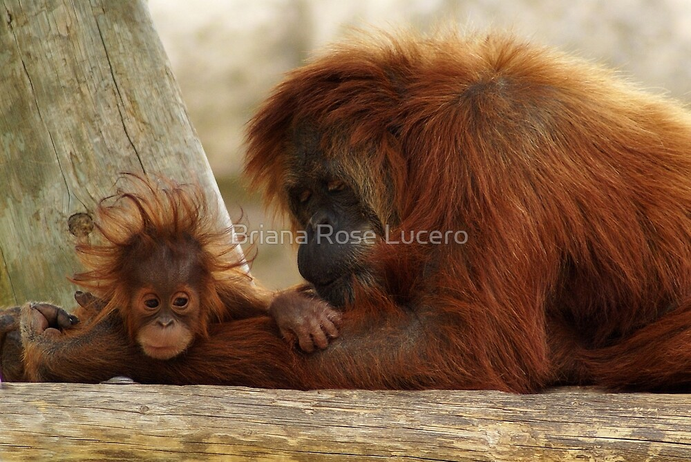 Mother and Child II by Briana Rose Lucero