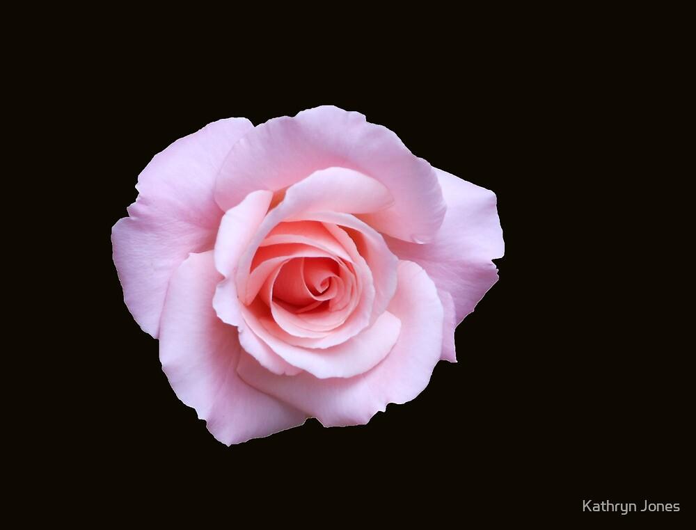 Gentle Rose by Kathryn Jones
