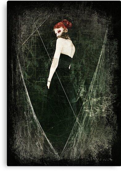 Black Widow II by Jennifer Rhoades