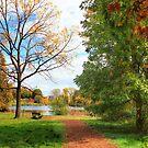 Lovely Path by Marija