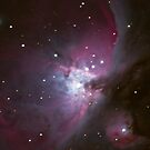 The Great Orion Nebula by Cole Stockman