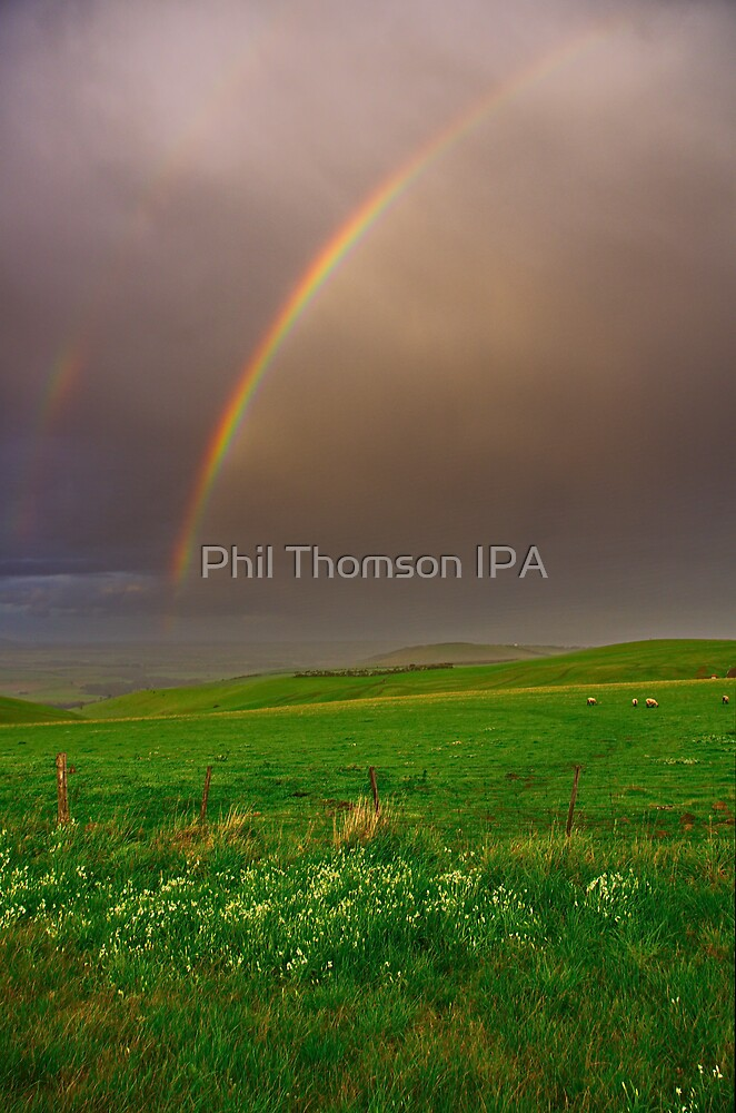 """A Late Afternoon Shower"" by Phil Thomson IPA"