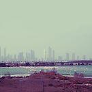 Reserve, Dubai 2010 by Olivia McNeilis