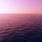 Ocean by Olivia McNeilis