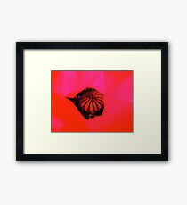 Cut and paste poppy Framed Print