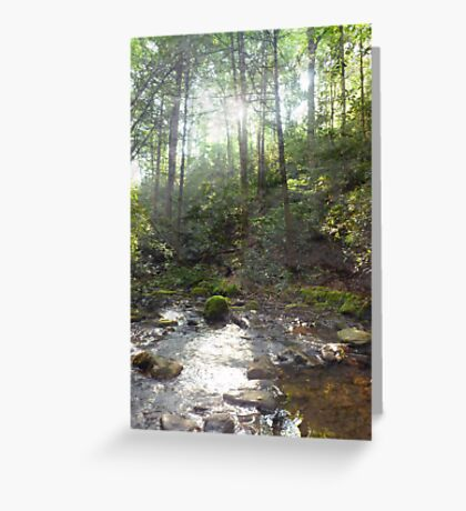 Silver Morning Greeting Card