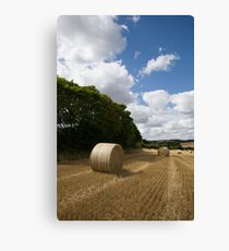 Golden summer harvest Canvas Print