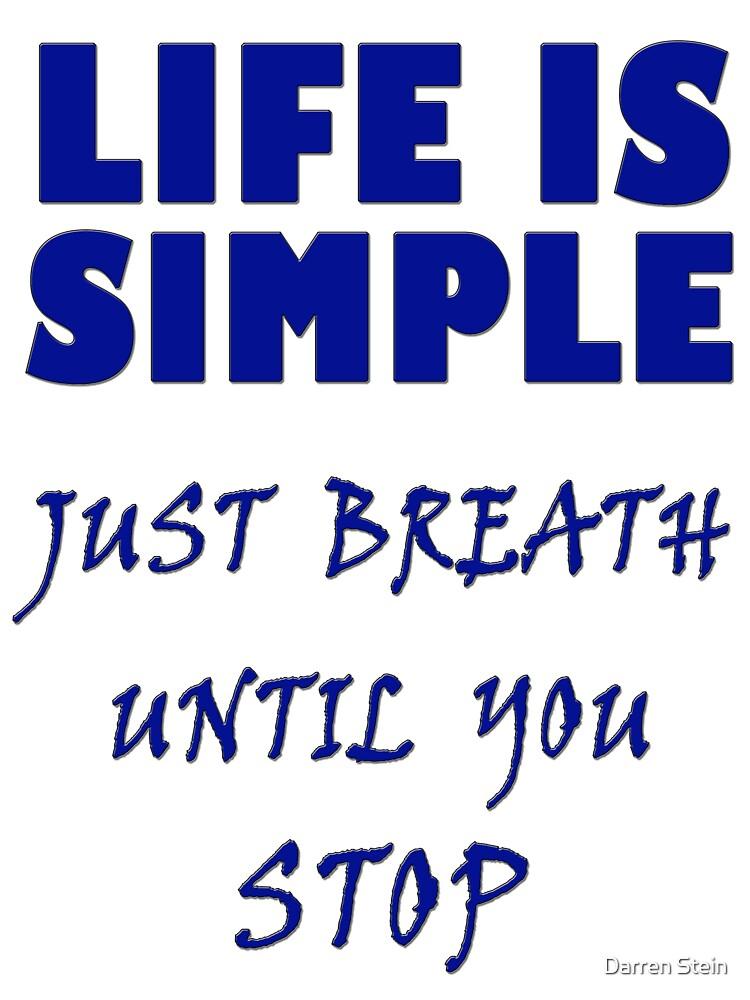 Life Is Simple  by Darren Stein