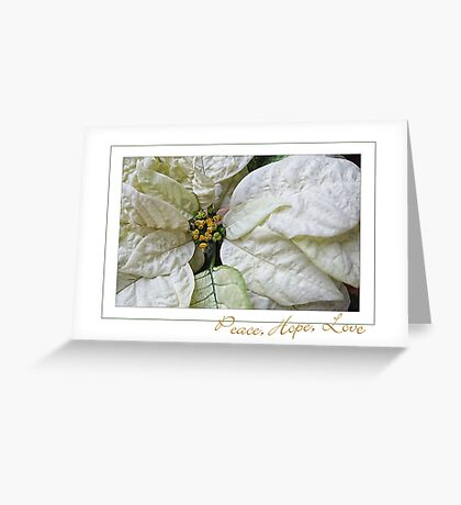 White Poinsettia Peace Love Hope Christmas Card Greeting Card