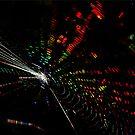 Spidy's Universe by Irina Chuckowree