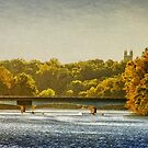 Harrison Street Bridge by Debra Fedchin