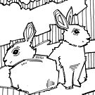 Common rabbit, coloring book page by Gwenn Seemel