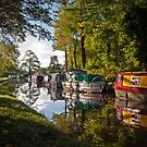 Monmouthshire and Brecon Canal at Goytre by Steve  Liptrot
