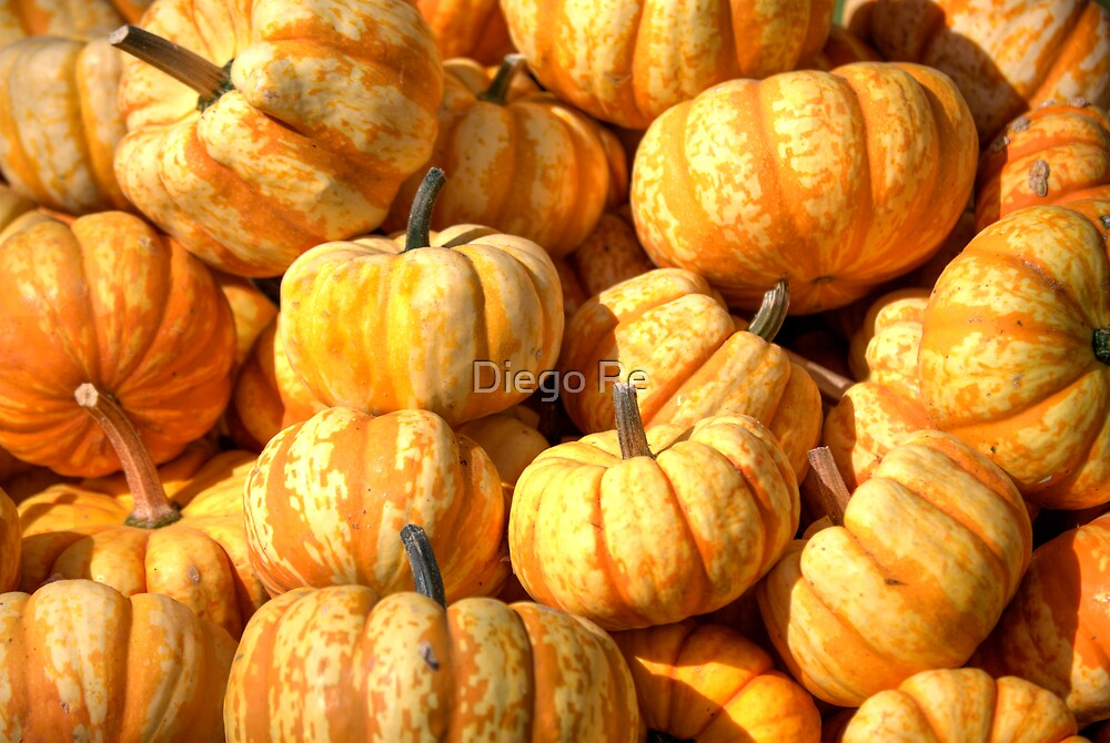 Decorative Pumpkins by Diego Re