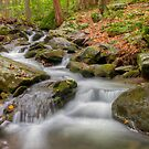 Mountain Stream by JHRphotoART