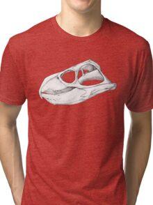 Rhynchosaurs Sure Are Weird - 1 Tri-blend T-Shirt