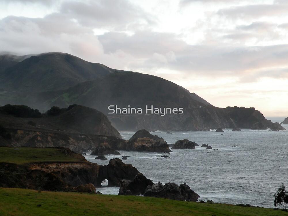California Coastline by Shaina Haynes