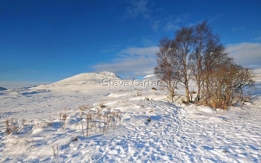 Ranoch Moor by Steve Carter