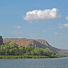 View along the Ord River, Kimberley, Western Australia by Margaret  Hyde