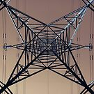 132,000 Volts by martin bullimore