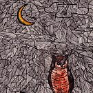 Owl and the Moon by samclaire