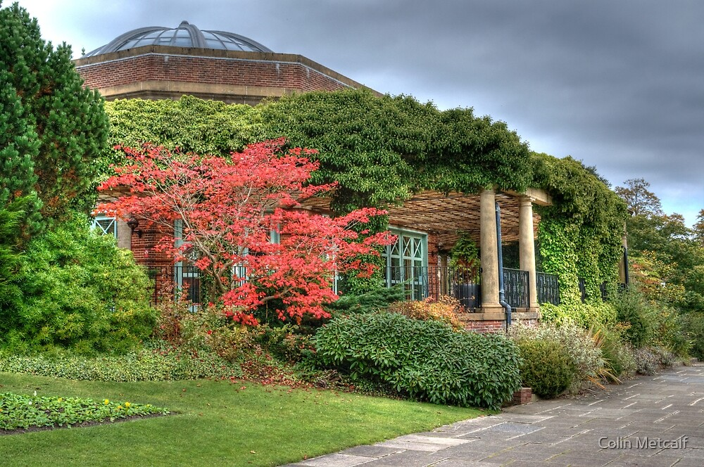 The Sun Pavilion by Colin Metcalf