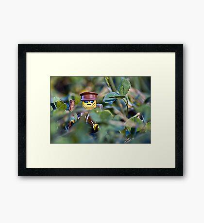 Hiker Framed Print