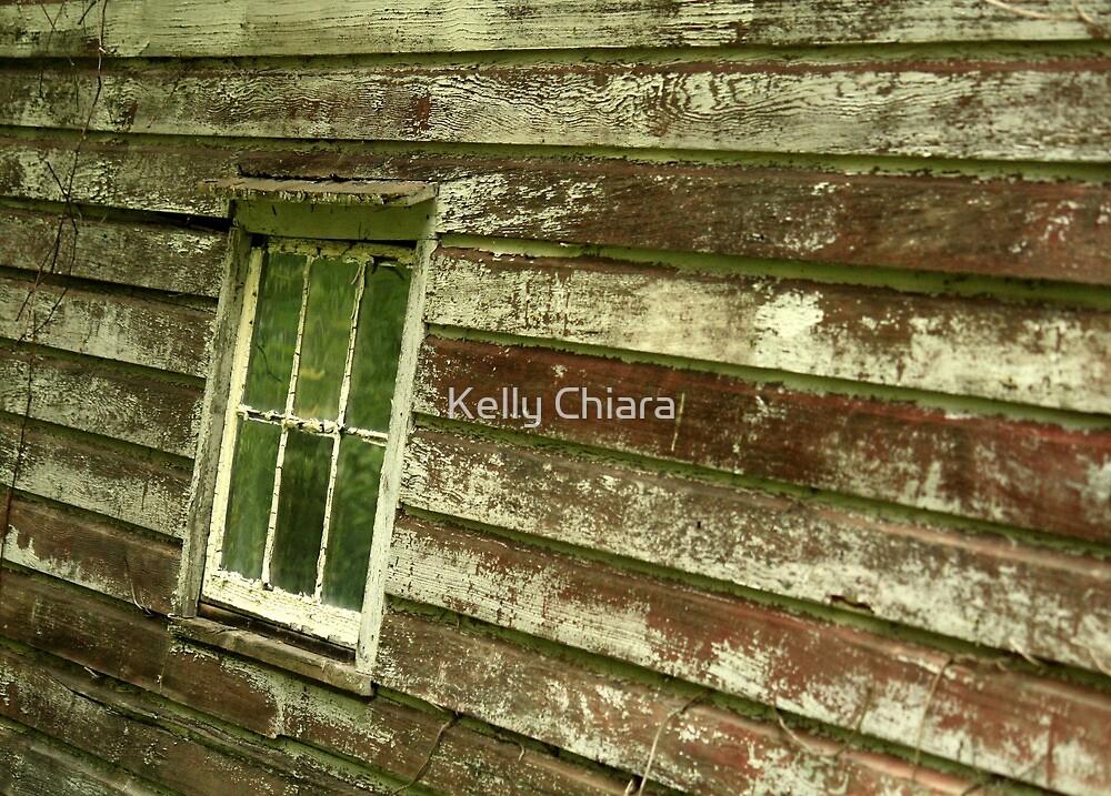 Side of a Barn by Kelly Chiara