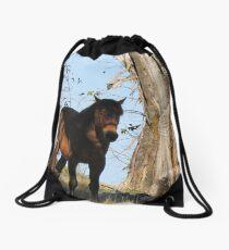Brumby  Drawstring Bag