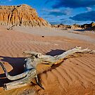 Mungo Landscape by Dilshara Hill