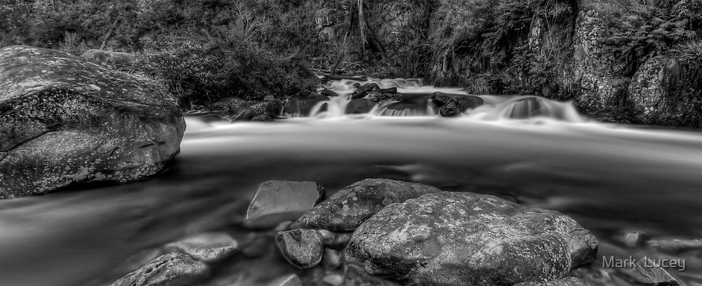 Rocks in the Wilderness by Mark  Lucey