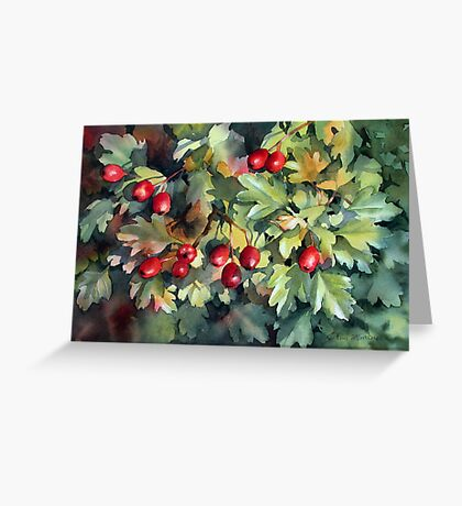 Hawthorn catching the sun Greeting Card