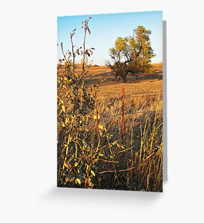 Out Standing in the Field Greeting Card